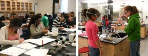 students-in-the-general-chemistry-and-organic-chemistry-labs